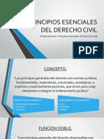 Personas - P.G. del Derecho Civil.pptx