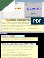 Steampro Walkthrough