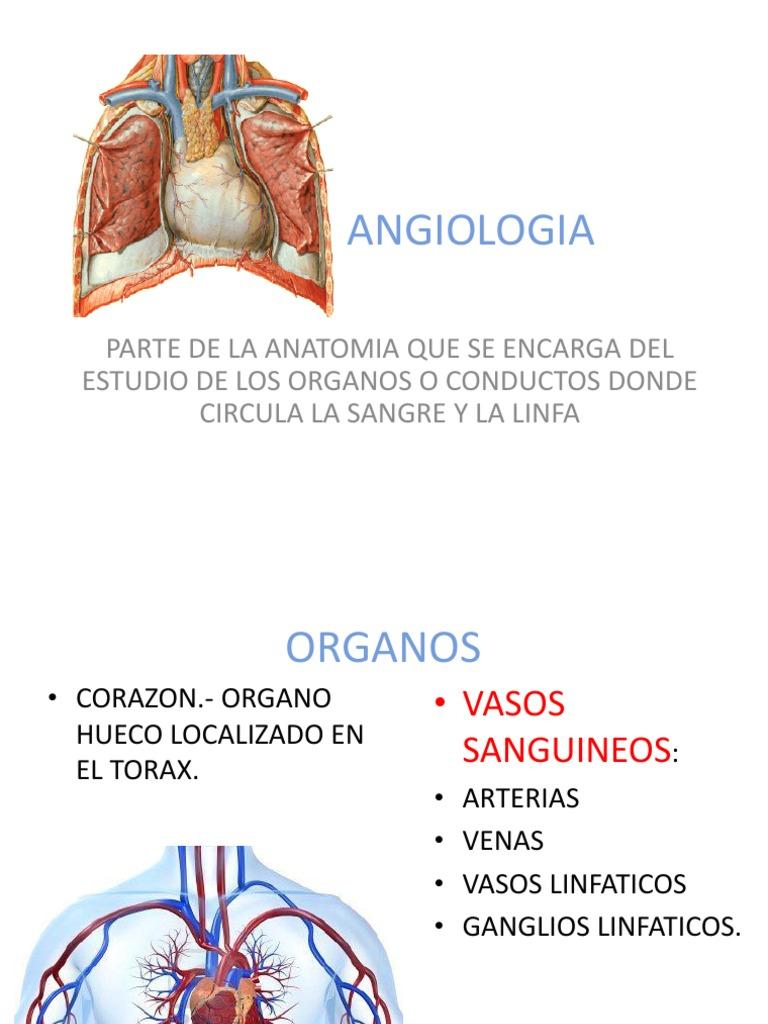 Angiologiarepaso Dra Carmen.