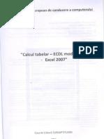 Calcul tabelar - Modulul 4 - Excel 2007
