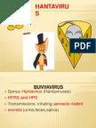 BUNYAVIRIDAE - HANTAVIRUSES