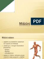 Mišićni sistem - prezentacija