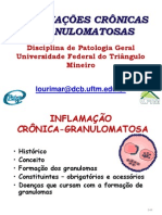 T12_INFLAMAÇÃO CRONICA GRANULOMA_2ºsem_2012-parte-1