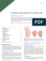Anatomie chirurgicale de la région anale