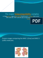 The Major Histocmpatibility Complex
