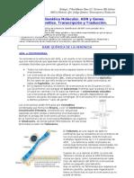 Tema III-4. Genetica Molecular