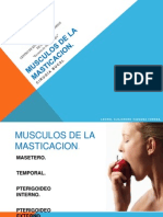 Musculos de La Masticacion