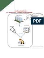 TI en Las Organizaciones - C1 - Entorno y TI - Dominio Organizacional