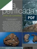 Fosiles de Cantabria