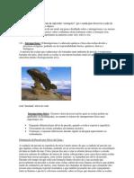 Intemperismo.pdf
