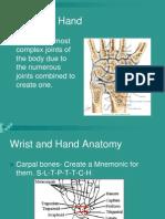 Hand and wrist