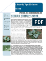 silverleaf whitefly on squash.pdf