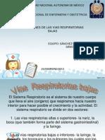 Vias Respiratorias Bajas2