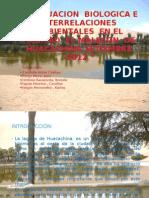 diapositivas huacachina -ecologia 1