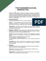 Conceptos Fundamentales de Derecho Civil Victor..