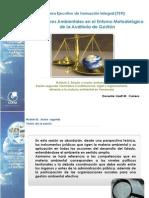 01_Presentación de contenido_docente Lizett Carrero_El ambiente en general
