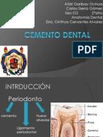 Cemento Dental Todo