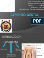 Cemento Dental Todo