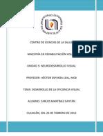 TEXTO EFICIENCIA VISUAL.pdf