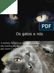 A Vida Secreta Dos Gatos_com Som
