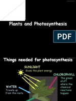 9C Plants and Photosynthesis
