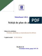 Schita de Plan de Afaceri