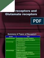 - GABA Receptors and Glutamate Receptors Mars2010