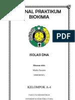 Isolasi DNA.docx