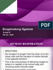 NS- Respiratory System.pptx