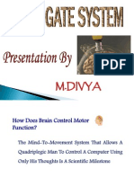 Div Ppt Brain Gate System