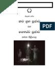Navagraha Saha Bahirava Puja Pilivela