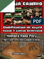 Razas y Lineas Geneticas en Cuyes