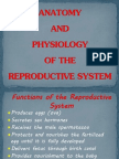 Anatomy and Physiology of the Reproductive System