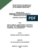 Tesis de Grado (Fernando Palacios Zambrano)