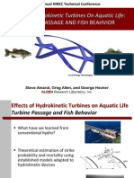 Effects of Hydrokinetic Turbines
