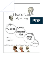the anatomy fourth lec..pdf