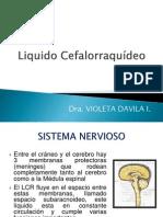 Liquidos LCR.pptx