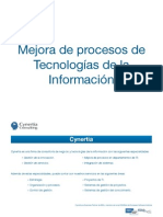 Cynertia - IT management 2009