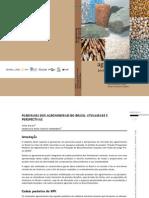 Agromineirais Para o Brasil