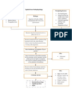 Typhoid Fever Pathophysiology