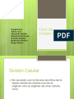 División+..
