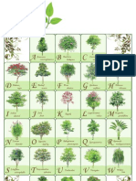 Alphabet Poster _ homework 4
