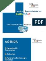 Julian Jaramillo Panorama Agroindustrial