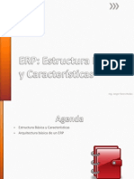 CRM Y ERP - VIII