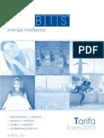 ORBIS Enero 2013 web.pdf