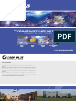 Deep Blue Pump Co Brochure 2010
