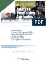 Rapport Cheveux Final Bd