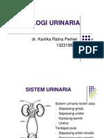 Histologi Urinaria [Compatibility Mode]