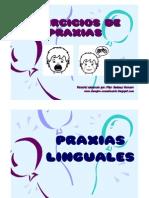 78142113-Praxias-buco-fonatorias.pdf