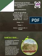 BUQUE FRIGORIFICO